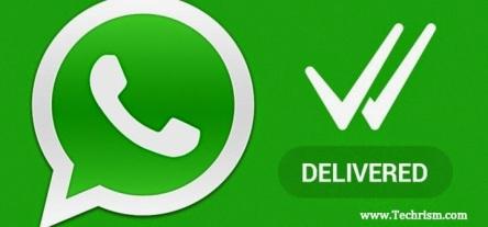 whatsapp-2Bdouble-2Btick