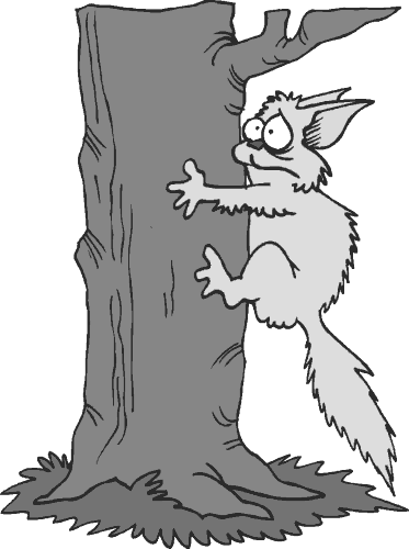 scared_cat_clinging_to_tree